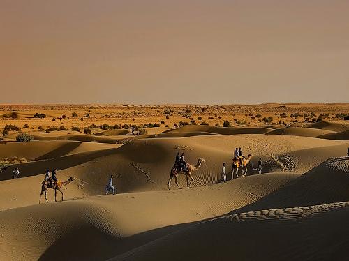 Séjour au Rajasthan