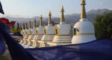 voyage ladakh en inde