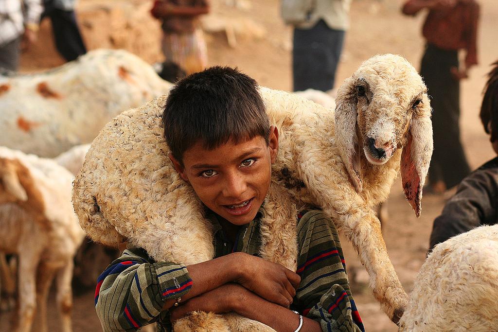 Voyage Rajasthan Inde